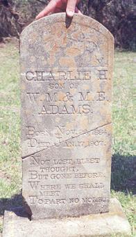 Charlie H Adams