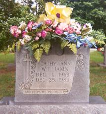 Catherine Ann Cathy Williams