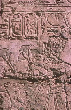 Ramses XI
