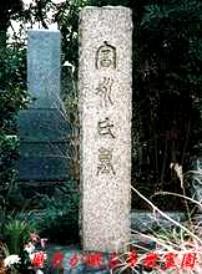 Taro Tominaga