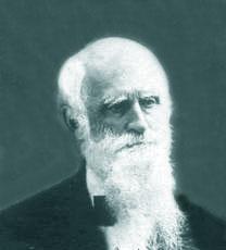 Henry Brewerton
