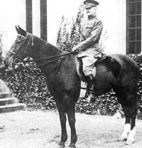 Warhorse Kidron