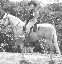 Wonder Horse Tarzan