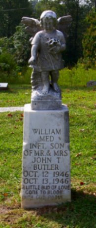 William Med Butler