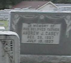 Andrew J Casey
