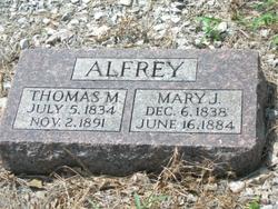 Thomas M Alfrey