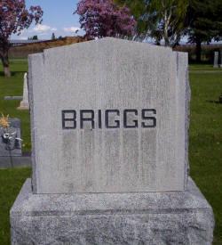 Sarah Ann <i>Briggs</i> Goody