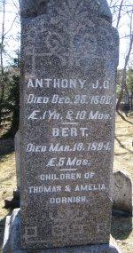 Anthony James Gettler Cornish