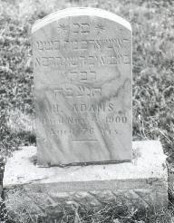 H Adams
