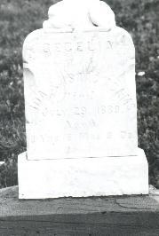 Cecelia Adams