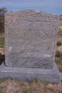Eliza <i>Freestone</i> Barnes