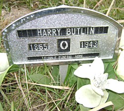 Harry Butlin