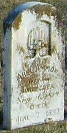 Abel Ammon
