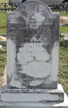 Mary E Lewis
