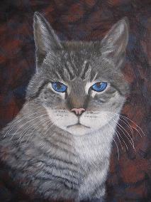 Ringo Kit-Cat Grobe