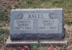 Harrison Harry Bales