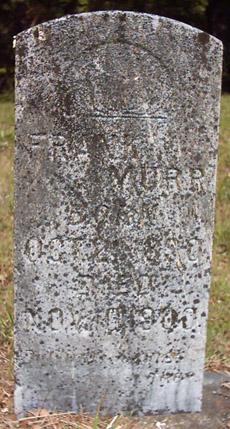 Frank Murr