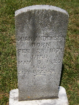 Joan <i>Foster</i> Anderson