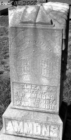Elizabeth Eliza <i>Stubbs</i> Ammons