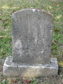Julia Arrington