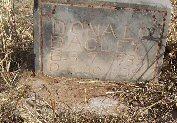 Donald Bagley