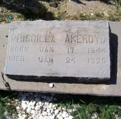 Priscilla <i>Williamson</i> Akeroyd