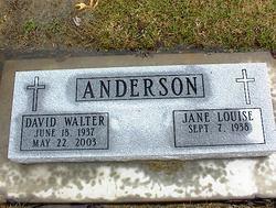 David Walter Anderson