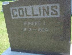 Robert J Collins