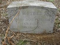Sarah Jane Brewster