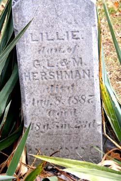 Lillie A. Hershman