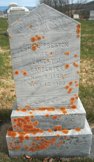 Ethel E. <i>Preston</i> Carpenter