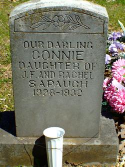 Connie Sapaugh