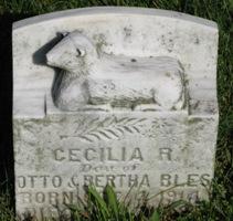 Cecilia R Bles