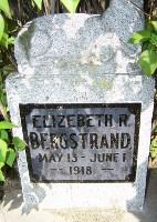 Elizabeth R Bergstrand