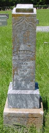 Julia Ann Scott <i>Jarrett</i> Adams