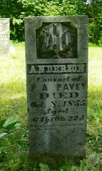 Anderson Pavey