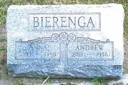 Andrew Bierenga