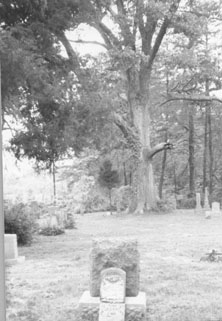 Old Trinity Springs Cemetery