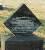 Carl DeViney