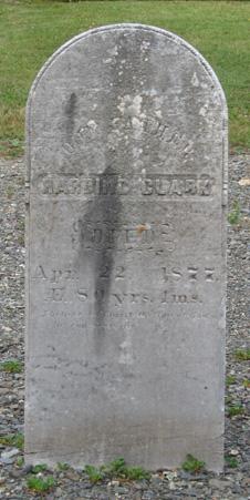 Harding Clark