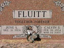 Calvin Samuel Fluitt