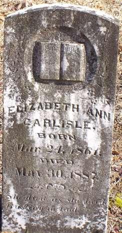 Elizabeth A <i>Palmer</i> Carlisle