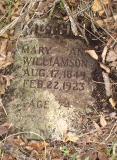 Mary Ann <i>Barnhill</i> Williamson
