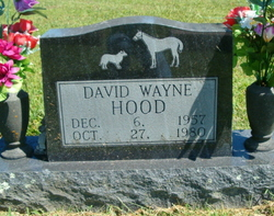 David Wayne Hood