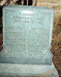 Thompson D. Bridges