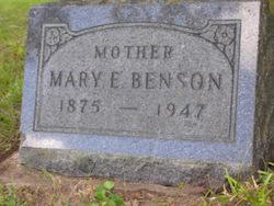 Mary E Benson