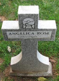 Infant Messenger Angelica Rose
