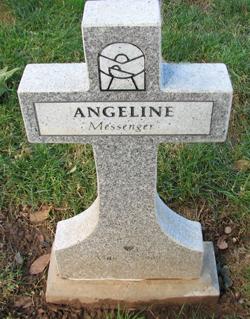 Infant Messenger Angeline