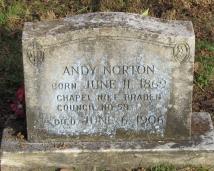 Andy Norton