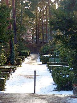 Waldfriedhof Dahlem am H�ttenweg